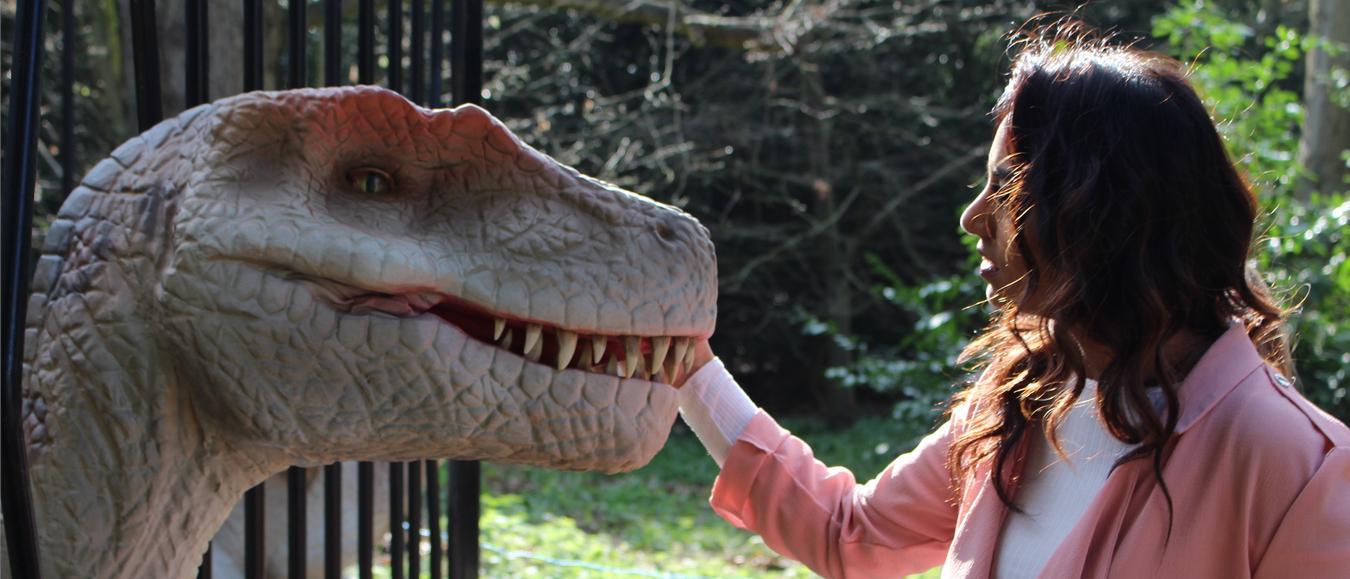 Dino's komen tot leven in Schiedam