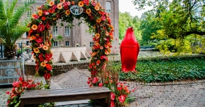 Amsterdam ArenA betreedt Indiase markt via lokale partnerships