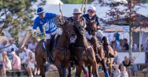 Brabant klaar voor grootste polo-evenement Benelux