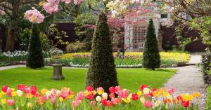 Tulpen Festival ambtswoning Burgemeester van Amsterdam