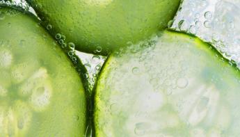 #Komkommercolumn: Maak kennis met de columnisten van deze zomer