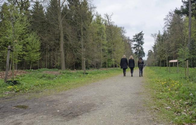 Eigen bos op Landgoed de Horst
