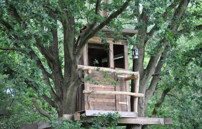 Break-out in een boomhut