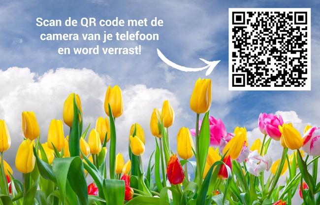 EventZ zorgt voor sunny vibes met de Voorjaar-Zomer Carrousel