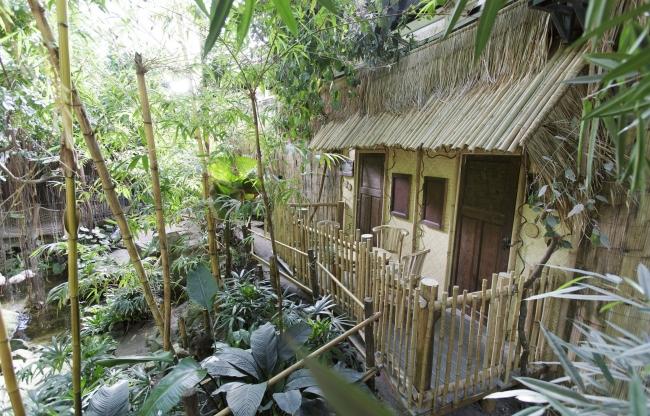 Jungle Cabana bij Jungle Dome Center Parcs Het Heijderbos