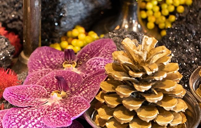 Najaar & kerst vieren á la Oogenlust