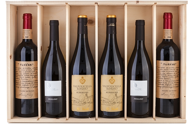 Solo Vino wijnbar & import