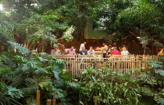 Terras bij Jungle Dome Het Heijderbos
