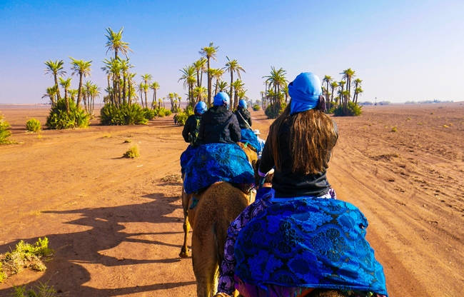 Kamelentocht in Marokko