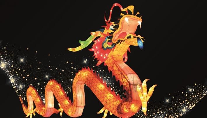 Magisch lichtfestival in Ouwehands Dierenpark