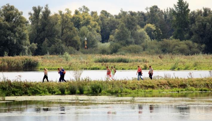 Hartstocht in de Biesbosch