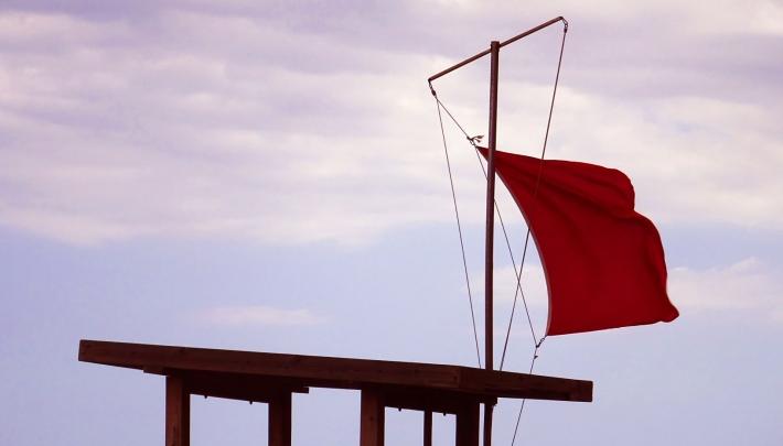 Commissie Borstlap houdt rode lap voor zzp'ers