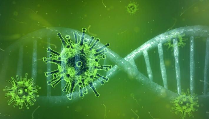 Het coronavirus: Is er een vangnet voor jou als zzp'er?