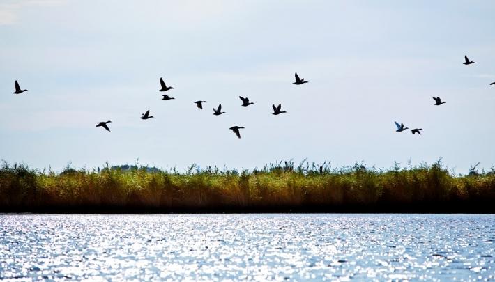 Friesland Waterland locatieroute in Zuidwest Friesland