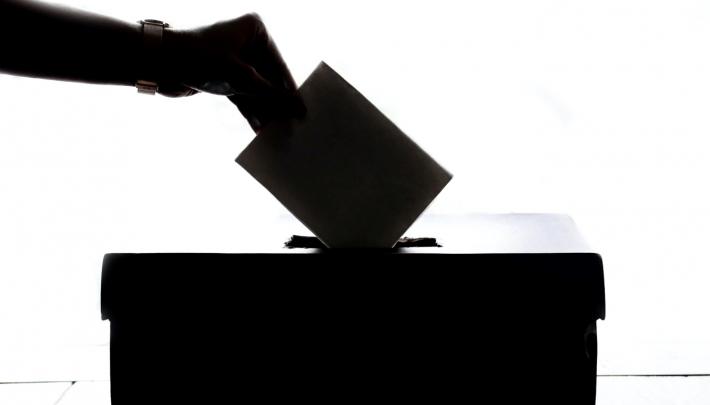 IINII stort zich op de verkiezingsmarkt