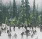 IJsvrij Park Festival open op oud- en nieuwsjaardag