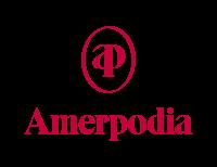 Amerpodia: Felix Meritis, Rode Hoed, het Compagnietheater en De Nieuwe Liefde